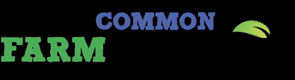 cropped-FC-logo-shadow-blue-1024x278
